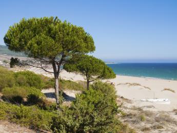 1275+Spanien+Costa_de_la_Luz+TS_510765249