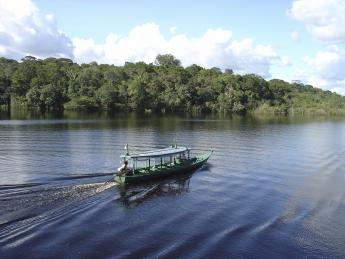 6183+Brasilien+Brasilien:_Amazonas_(Manaus)+TS_93340147