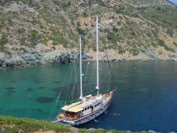 2019+Griechenland+Alonissos+TS_139392947
