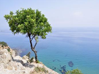 Südzypern