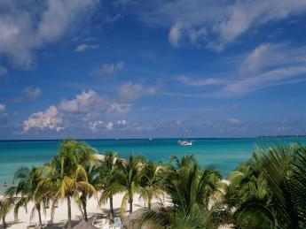 4263+Aruba+Palm_Beach+TS_72969241