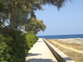 390+Spanien+Mallorca+Sa_Coma+TS_180388928