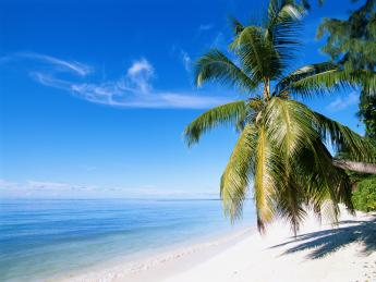 16+Guadeloupe+TS_200261415