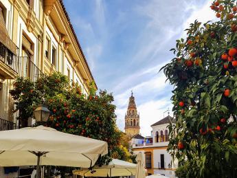 Altstadt von Sevilla - Sevilla