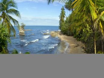 10233+Costa_Rica+Playa_De_Manzanillo_(Halbinsel_Nicoya)+GI-143368765