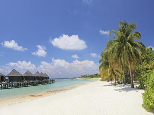 Malediven: Strand VI
