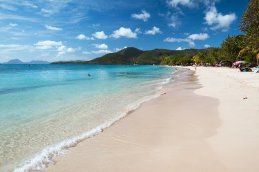 Sainte Anne beach - Martinique