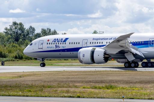 ANA All Nippon Airways Flugzeug