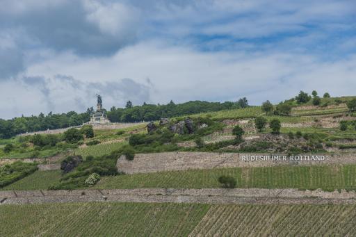 Deutschland-Weinfeste-Weinberge-Hessen-Rheingau
