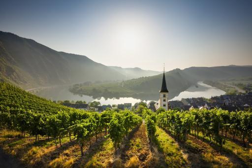 Weingut Bremm - Mosel