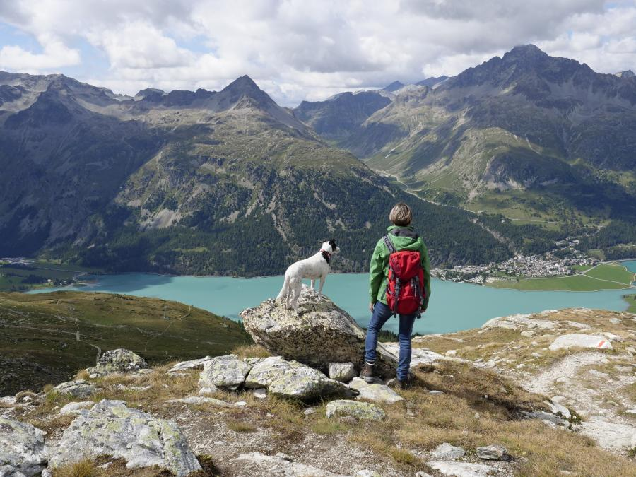 Hund+Wandern+Berge+See+GI-1090457988