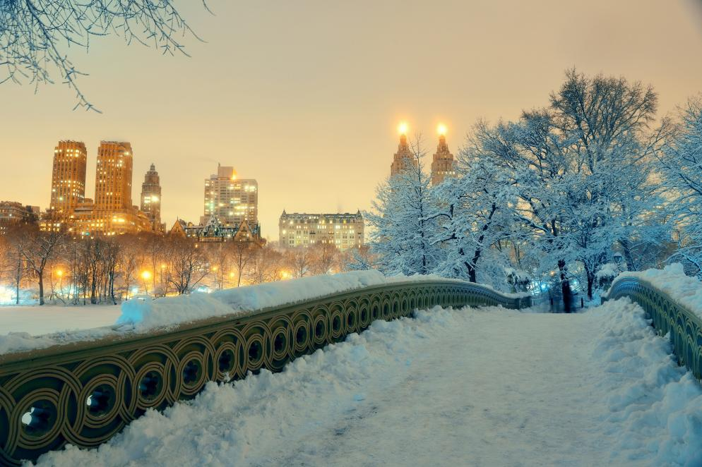 USA: New York - Winter